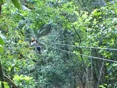 Rainforest Canopy Cable Cliding Adventure in St.Lucia Caribbean 2008