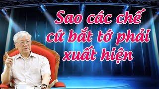 """Vì sao tổng tịch Nguyễn Phú Tr-ọ-ng """"mất tích"""" trên nghị trường quốc hội"""