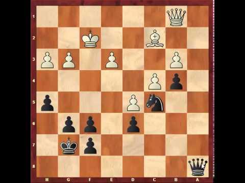 Chess: Stefan Gross 2410 - Susan Polgar 2275, Sicilian Dragon B70 http://sunday.b1u.org
