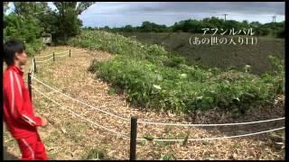『きらり登別 春夏秋冬』(動画)