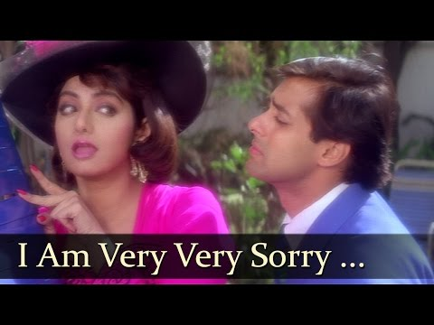 I Am Very Very Sorry Tera Naam - Salman Khan - Sridevi - CHand...