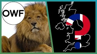 Wild LIONS In Britain? - One Wild Fact - Earth Unplugged