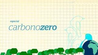 Uma mata s�mbolo de vida - Carbono Zero