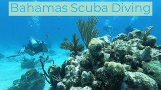 Stuart Cove's Bahamas Scuba Diving - GoPro Hero 6 [HD]