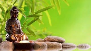 1 Hour | Relaxing Buddhist Music | Relajante música budista