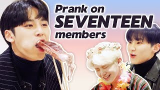 Dingo Pulled A Prank On SEVENTEEN Members! • ENG SUB • dingo kdrama
