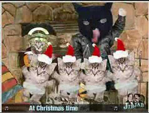 A Christmas Cat Song