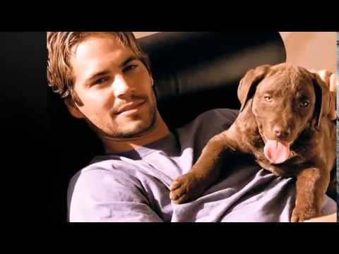 1 year after the death of Paul Walker - Gone but never forgotten (12.09.1973 - 30.11.2013)