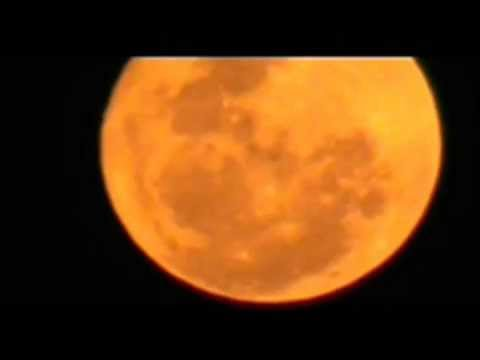 Gold Moon 8-Feb-2012.wmv