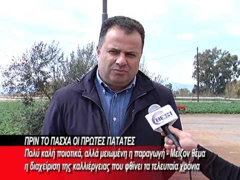 KALLIERGEIA_PATATAS.mpg
