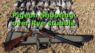 2015/07/04 - Pigeon Shooting Over Rye With Slo Mo