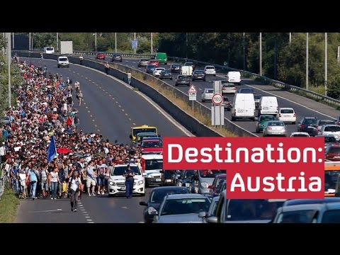 Refugee crisis: hundreds begin march to Austria
