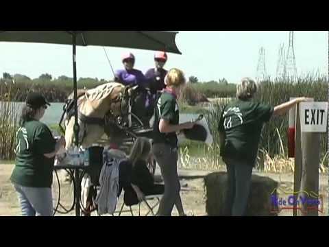 50M Dana Moore Intermediate Single Pony Marathon at Shady Oaks CDE 2011