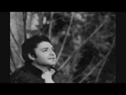 Емил Димитров - Вещица, Вълшебница