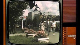 The Lemons - 1983-86 (Official Music Video)