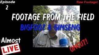 Almost Live - Footage From the Field - Bigfoot & Ginseng