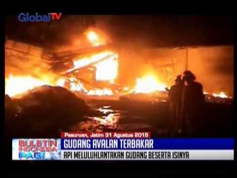 Gudang Avalan Beserta Isinya Ludes Terbakar Di Pasuruan, JaTim - BIP 01/09