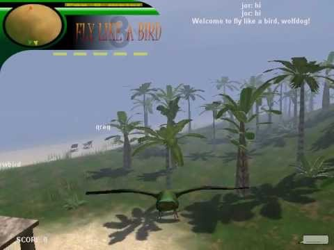 Fly Like a Bird 3-Parakeet - YouTube