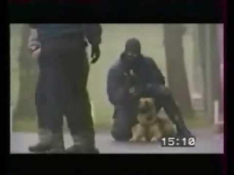 PoliceDog / Работа полицейских собак