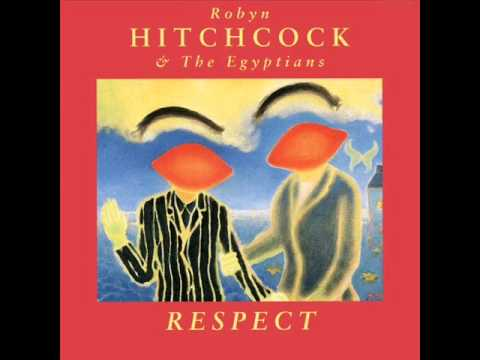 Robyn Hitchcock - When i Was Dead