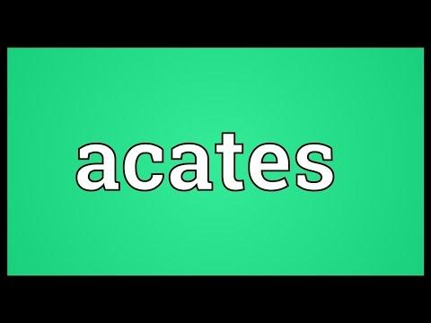 Header of Acates