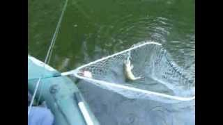 рыбалка на орлике в украине