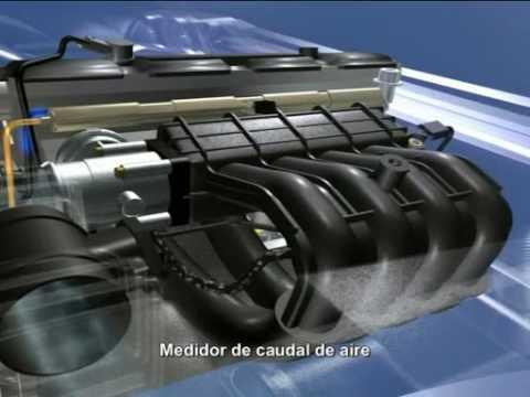 Motor Inyeccion - componentes