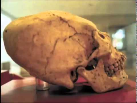 Riesen Skelett Menschen Skelette Von Riesen Und