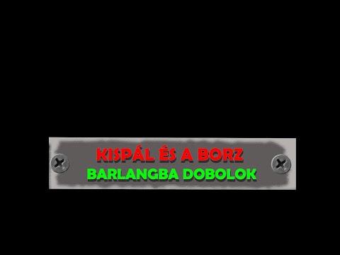 Kispál és a Borz - Barlangba dobolok /dalszöveg videó/