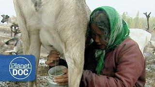 Gengis Khan. Endangered Tribe   Culture - Planet Doc Full Documentaries