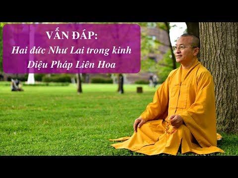 Vấn đáp: Tiềm năng làm Phật | Thích Nhật Từ