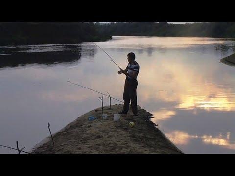 ловля сомов на реке мокша