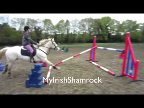 Horse Riding Falls and Fails!!