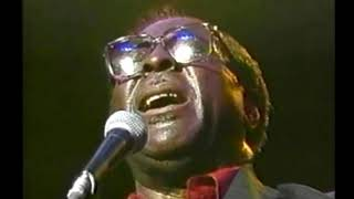 Albert King - Japan Blues Carnival 1989
