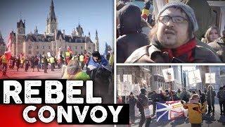 United We Roll vs. Antifa: David Menzies in Ottawa | David Menzies
