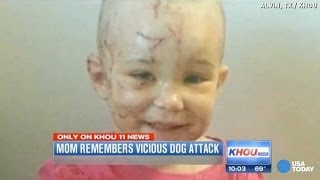 Mom bites off dog