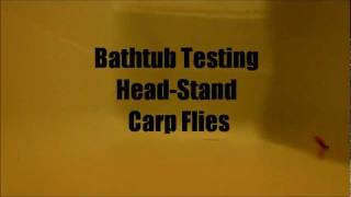 Bathtub Testing Proto Head-Stand Carp Flies