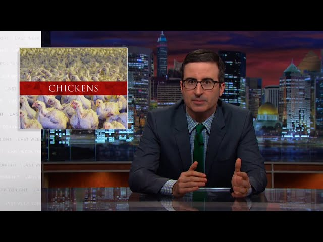 Last Week Tonight with John Oliver: Chickens (HBO)