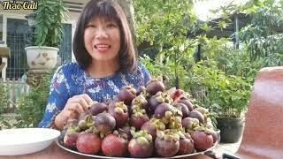 Vô vườn măng cụt, mua một mâm trái cây chôm chôm, bưởi, nhãn, cóc quá ngon