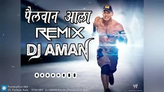 Pailwan Aala  -  EDM MIX - DJ AMAN Remix || DJ's OF Mumbai ||