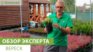 Видео канала Садовый центр Greensad (Гринсад), Смотреть онлайн