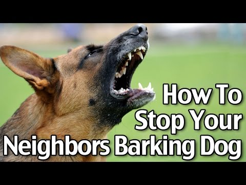 How to Stop Your Neighbors' Dog from Barking
