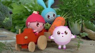 Малышарики - Обучающий мультик для малышей - Все серии подряд -  Растения ! 🌾🌱🌳🥕🥝