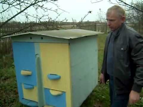 Платформа для пчёл своими руками фото