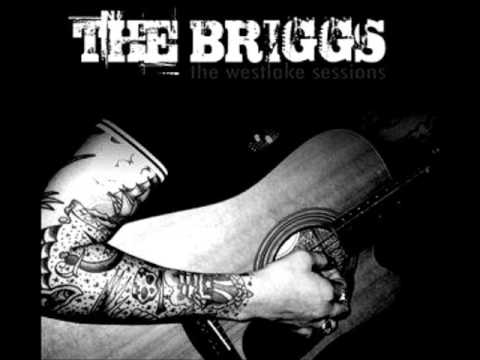 Briggs - One Shot Down