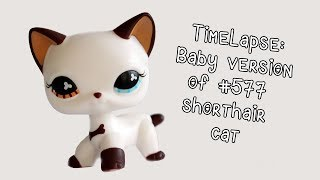 Timelapse Baby Version Of Rainbow Shorthair Cat Lps Custom