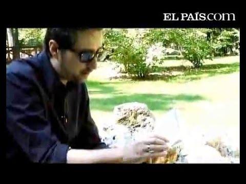 Patricio Pron - Babelia En La Feria Del Libro   Julio Verne video