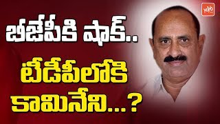 Huge Shock To BJP | Ex Minister Kamineni Srinivas To Join TDP? | Chandrababu | YS Jagan