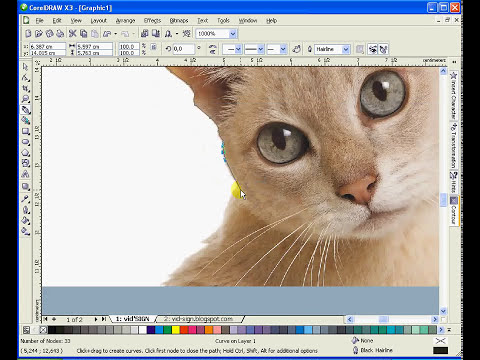 How to Erase Background Image Using CorelDRAW