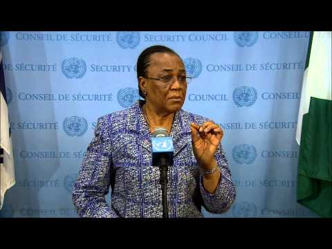 On Western Sahara, ICP asks UNSC Prez Ogwu of Rights Mechanism, She Says She Spoke in Favor,